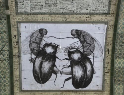 Torino streetart 1