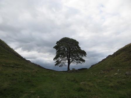 Hadrian's Wall 4
