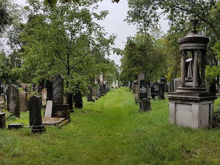 Zentralfriedhof 5